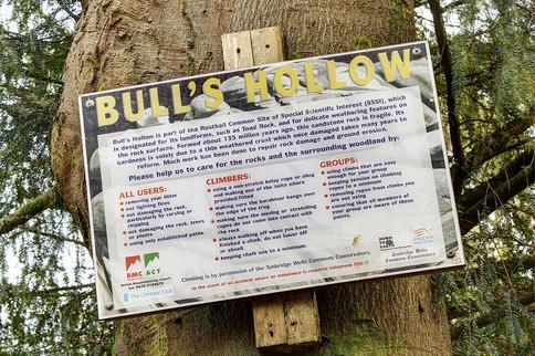 Bulls-Hollow36.jpg
