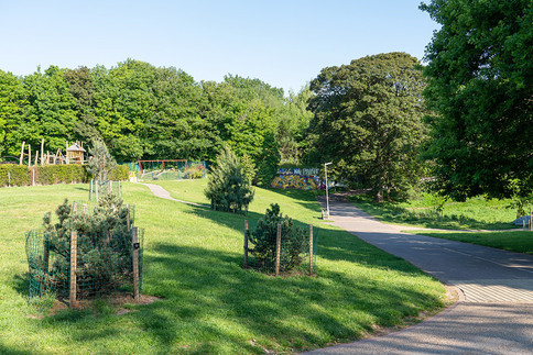 Grosvenor-Park-2019-72.jpg
