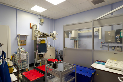 Radiography-01.jpg