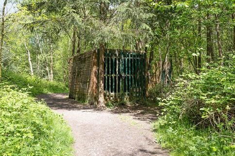 Hargate Forest Tunnels-07.jpg