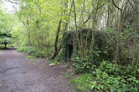 Hargate Forest Tunnels-12.jpg