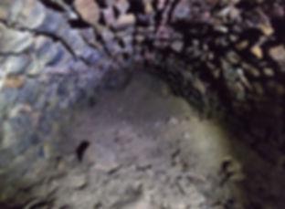 Sherwood-Tunnel-Gallery.jpg