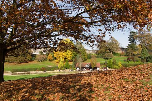 Calverley-Grounds54.jpg