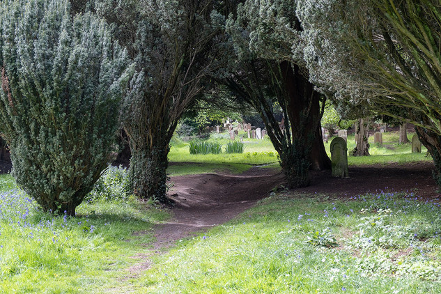 Woodbury-Park-34.jpg