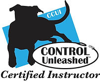 control unleashed certified instructor logo