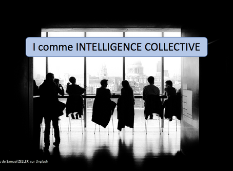 I comme INTELLIGENCE COLLECTIVE