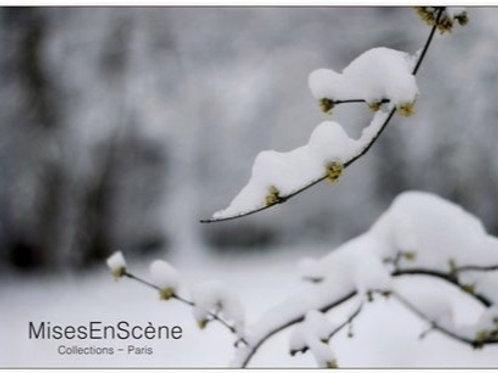"Carte postale ""la neige"""