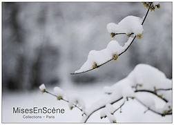 la neige.jpg