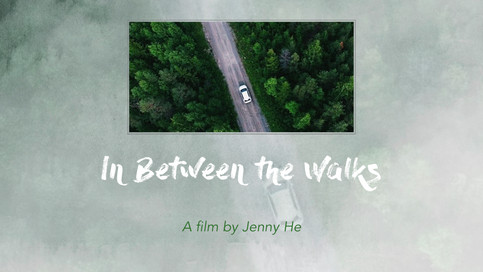 In Between the Walks