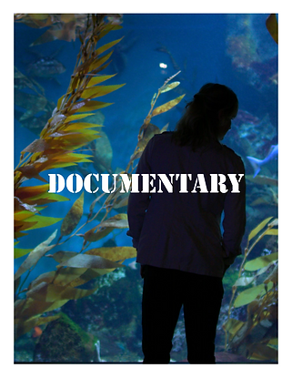 Documentary.png