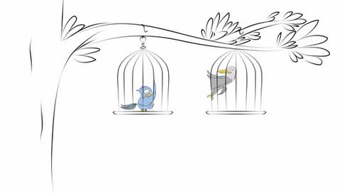 Crooked Beaks