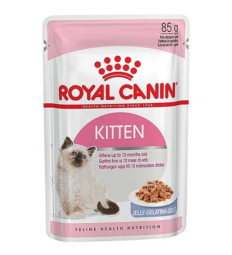 Royal Canin - Kitten Instinctive in Jelly