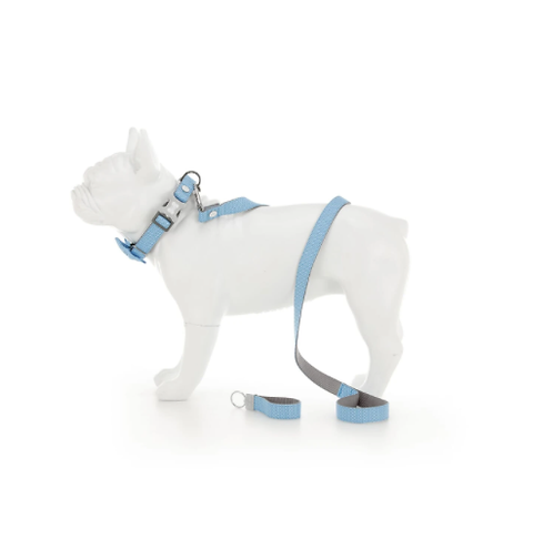 Blue Geometric Dog Accessory Set