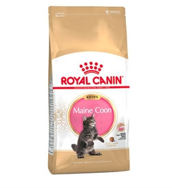 Royal Canin - Kitten Maine Coon