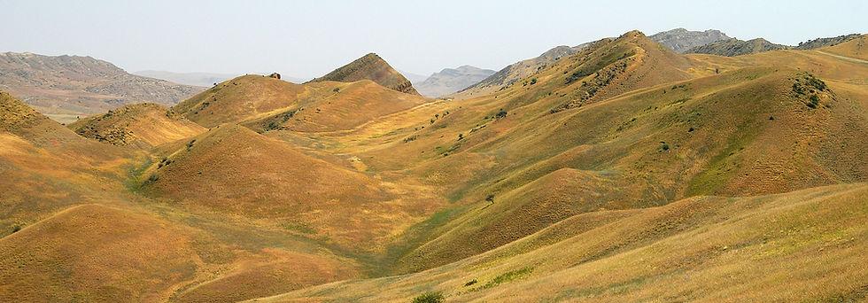 Prophototrip Georgian Desert