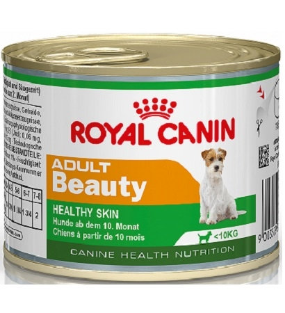 Royal Canin Mini Adult - Beauty Wet Food