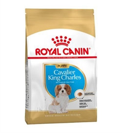 Royal Canin - Cavalier King Charles Spaniel Puppy