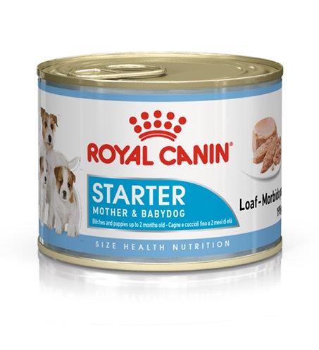 Royal Canin - Starter Mousse