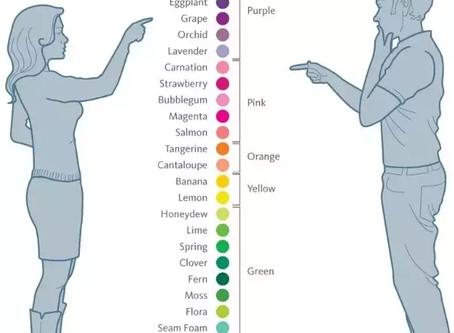 Δυσχρωματοψία - Αχρωματοψία