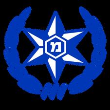 logo Israeli Police