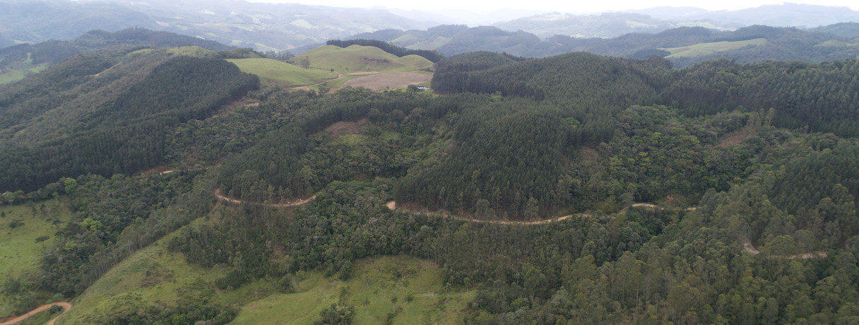 Santa Catarina Landscape 1