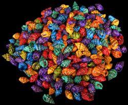 Dyed Nassa Phyrus (kilo)