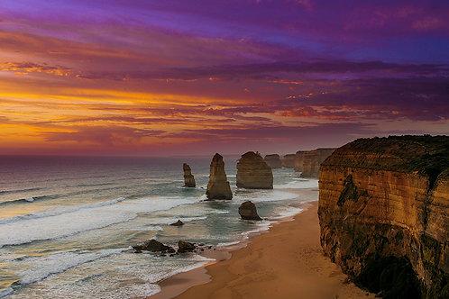Purple Coast