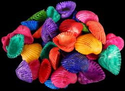 Dyed Arks (kilo)
