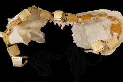 Gold Oyster Shell Belt