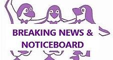 purple penguins.jpg