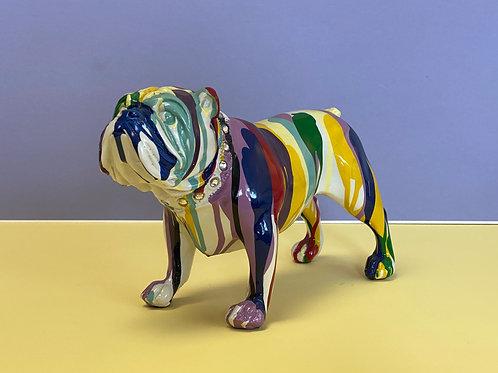 Bulldog with Graffiti