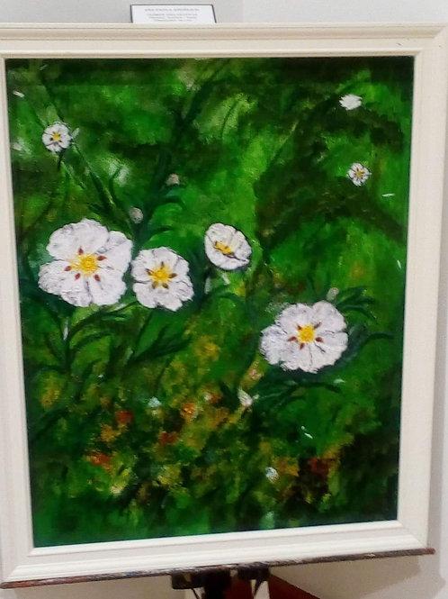Flores das Estevas