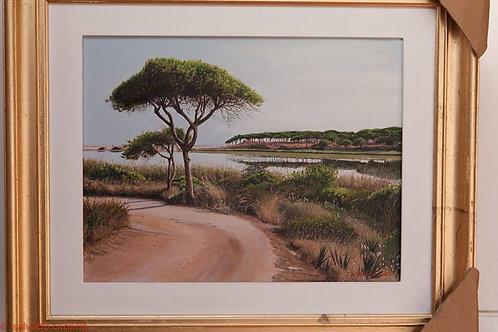 Algarve Praia do Almargem