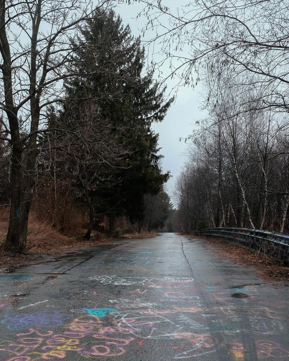 laurel street