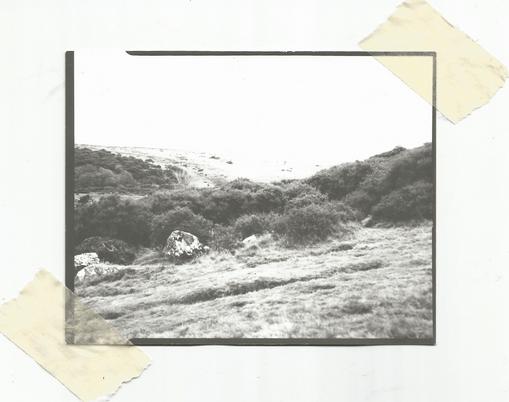 Fields [Dartmoor]