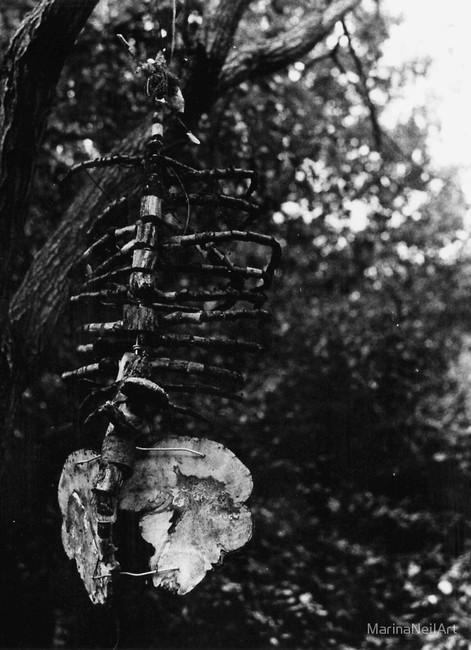Bleak Wooden Skeleton
