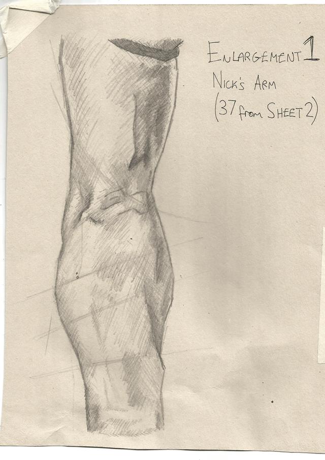 Study of Arm