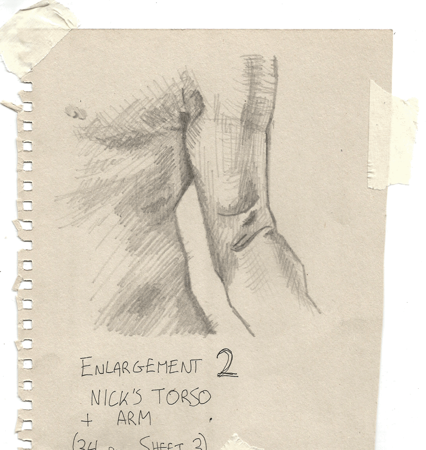 Study of Torso