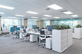 Office Design and fit out New Zealand   whitewood Agency   Interior Design   Byron Bay
