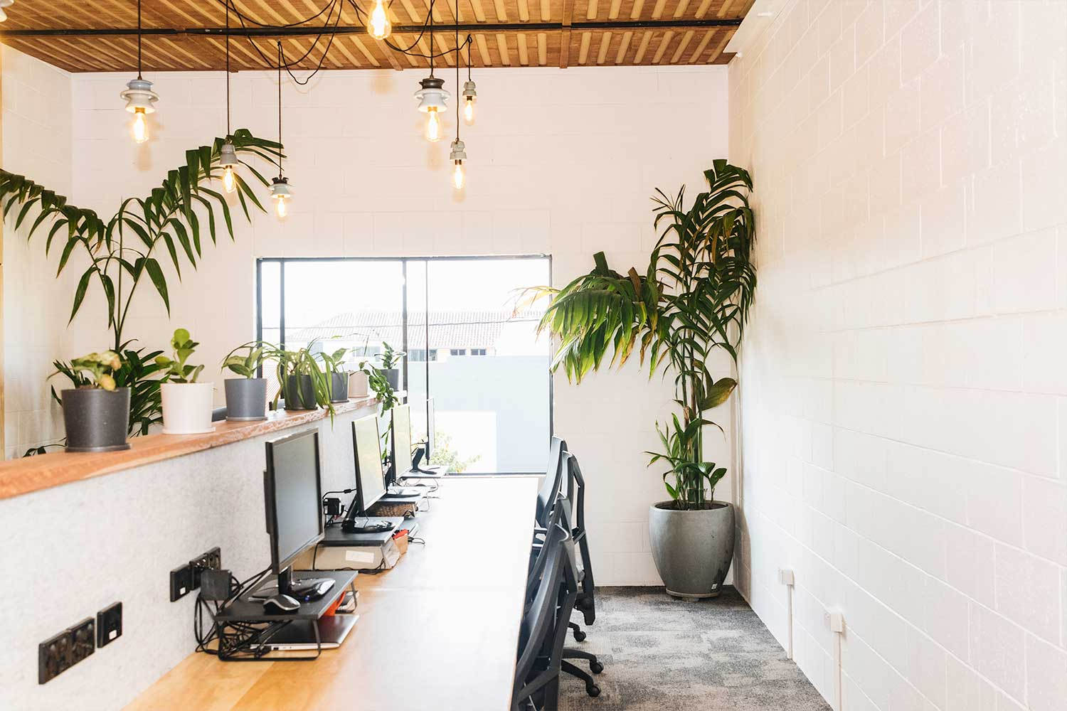 smart energy bright timber office byron bay