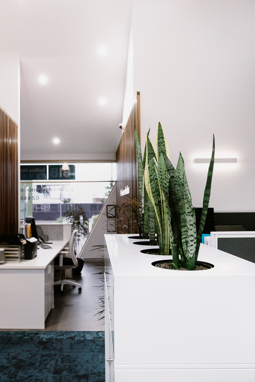 Ballina Insurance | offices | whitewood agency | Interior Design