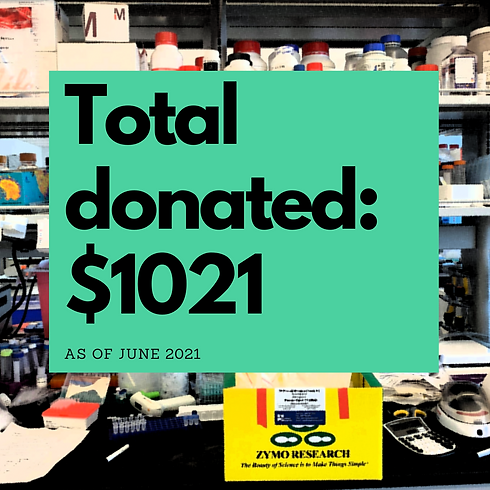 Copy of $591 donated.png