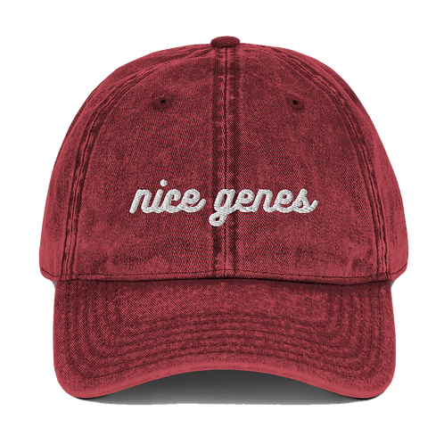 nice genes twill hat