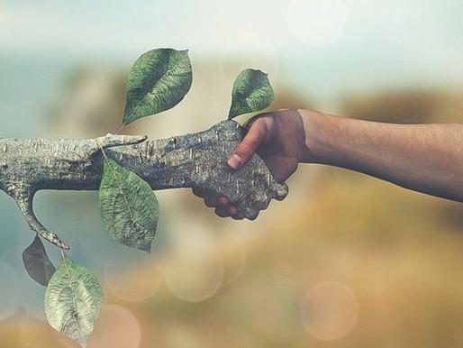 Φυσικό περιβάλλον και οικολογική ισορροπία