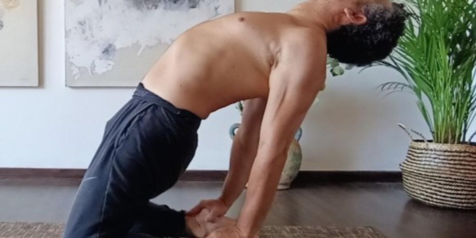 Formation Pilates niveau basique module 1