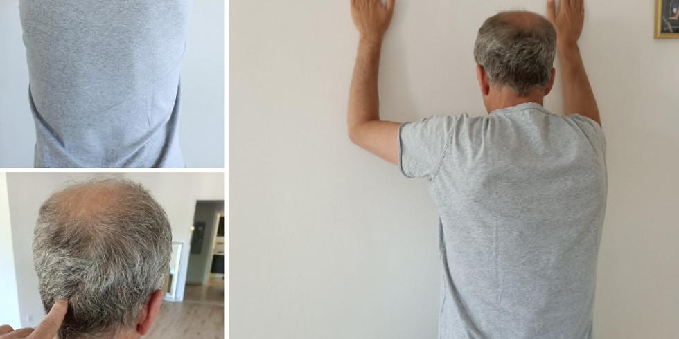 Ceinture scapulaire /  lombaire / Maux de dos / Fascias : libérer vos tensions