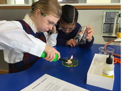 Science Learning