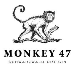 Monkey47 Gin