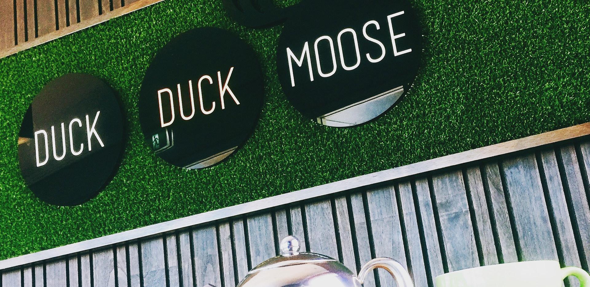 duck-duck-moose-6.jpeg