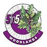 5in5woodlands2020-300_edited.jpg